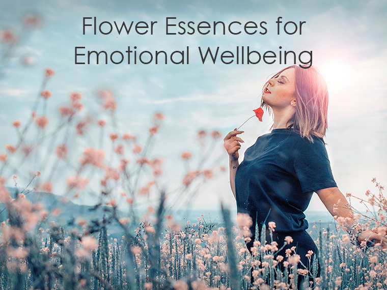 Flower Essences for Emotional Wellbeing